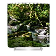 Torc Waterfalls Two Shower Curtain