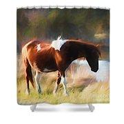 Totem Animal Book Horse Shower Curtain