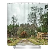 Track Through The Wood Shower Curtain by Nick Bywater