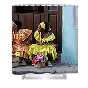Traditional Meets Modern Shower Curtain
