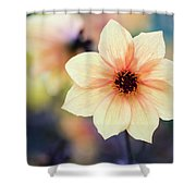 Transport Me To Summer Shower Curtain by Emily Johnson