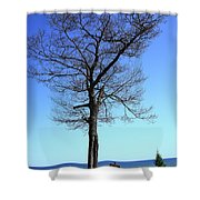 Tree And Great Lake Shower Curtain