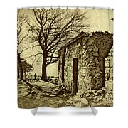 Tree And Ruins Shower Curtain