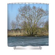 Tree On Frozen Lake Shower Curtain