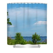 Trees By The Water Shower Curtain