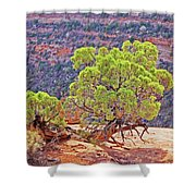 Trees Plateau Valley Colorado National Monument 2871 Shower Curtain
