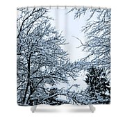 Trees With Snow Shower Curtain
