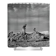 Tres Marias Black And White Moon Valley Chile Shower Curtain