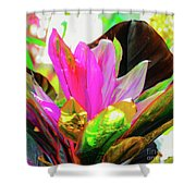 Tropic Hawaii - Ti Leaf Plant Shower Curtain