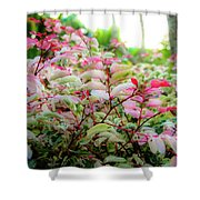 Tropic Leaves Shower Curtain