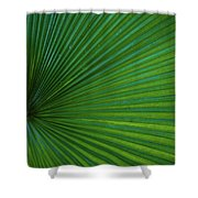 Tropical Leaf Shower Curtain by Emily Johnson
