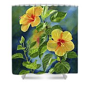 Tropical Yellow Orange Hibiscus With Background Shower Curtain