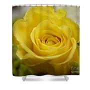 Try A Little Tenderness Shower Curtain