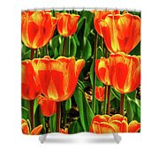Tulips 2019d Shower Curtain