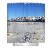 Turnagain Arm And Chugach Range From Hope Alaska Shower Curtain
