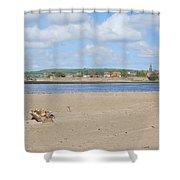 Tweed Estuary To Berwick-upon-tweed Medieval City Walls, Bridges Shower Curtain