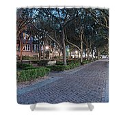 Twilight Panorama Of Charleston Waterfront Park Promenade And Shady Canopy Of Oaks - South Carolina Shower Curtain