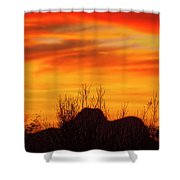 Twin Peaks Silhouette H1840 Shower Curtain by Mark Myhaver