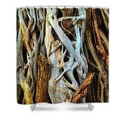 Twisted Tree Limbs Shower Curtain