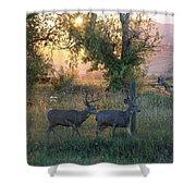 Two Deer Sunset Shower Curtain