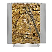 Two Owls In Autumn Tree Shower Curtain