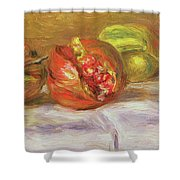 Two Pomegranates Shower Curtain