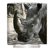 Up Close Look At The Face Of A Rhinoceros Shower Curtain