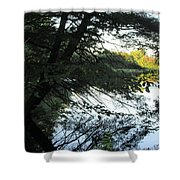 View Of The Lake Through The Branches Shower Curtain