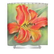 Vivid Orange Daylily Shower Curtain by MM Anderson