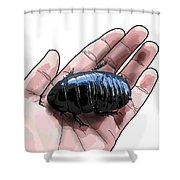 W Is For Wood Cockroach Shower Curtain