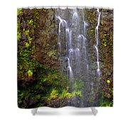 Waimoku Falls Shower Curtain