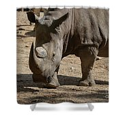 Walking Rhino With One Large Horn And One Small Horn Shower Curtain