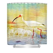 Walking The Waves Of Sanibel Shower Curtain