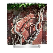 Walking Wall Shower Curtain