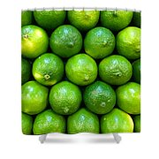 Wall Of Limes Shower Curtain