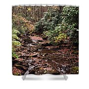 Washington Creek Shower Curtain