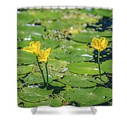 Water Garden Shower Curtain