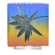 Water Lily Duo Shower Curtain