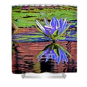 Water Lily10 Shower Curtain