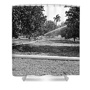 Water Spray Orchard Shower Curtain