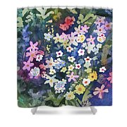 Watercolor - Alpine Wildflower Design Shower Curtain