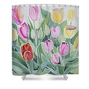 Watercolor - Spring Tulips Shower Curtain