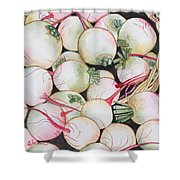 Watermelon Radishes And A Teeny Ear Of Corn Shower Curtain