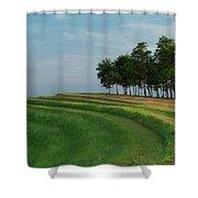 Waves Of Grass Shower Curtain by Davor Zerjav