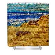 Waves On A Rocky Beach Shower Curtain