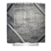 Web Dew Shower Curtain