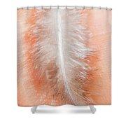 Weightless Wonders Shower Curtain