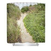 Wellfleet Sand Dunes Shower Curtain