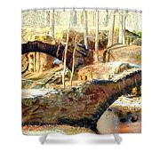 Weymouth Furnace 1802-1862 Shower Curtain