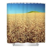 Wheat And Mounds Shower Curtain